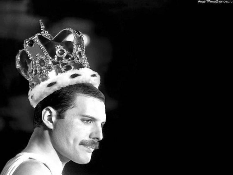 queen-freddie.mercury