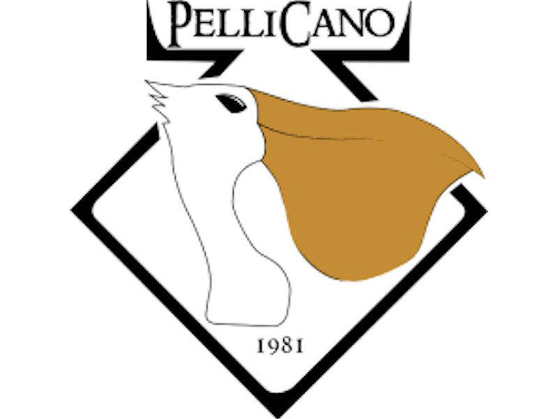 Locali, musica, Italia, Stone Music, Pellicano Pub ,Bari
